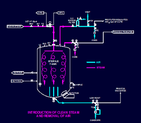 Steam In Place Sterile Process Systems Sip Guidelines